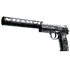 USP-S | Dark Water (Field-Tested)