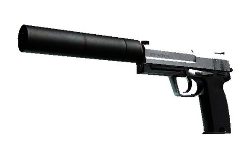 Buy StatTrak™ USP-S | Stainless (Field-Tested)