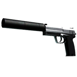 StatTrak™ USP-S   Stainless (Field-Tested)
