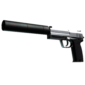 USP-S | Stainless (Factory New)