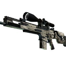 SCAR-20 | Palm (Well-Worn)