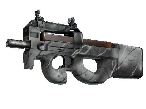 P90 | Ash Wood Factory New