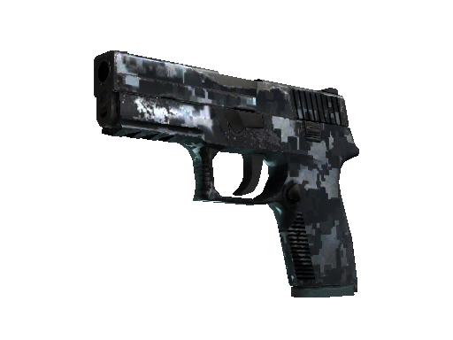P250  |  Steel Disruption  Field-Tested