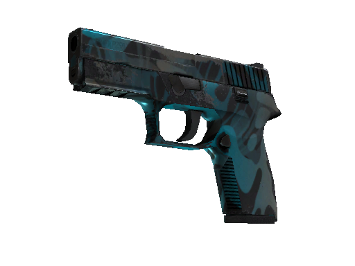 P250 | Ripple Field-Tested