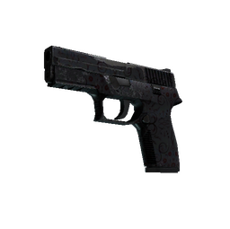 P250 | Dark Filigree (Well-Worn)