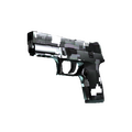 P250 | Metallic DDPAT <br>(Factory New)