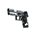 P250 | Metallic DDPAT