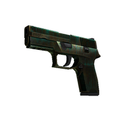 P250 | Verdigris (Battle-Scarred)
