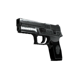 StatTrak™ P250 | Cartel (Field-Tested)