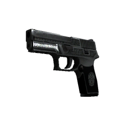 StatTrak™ P250 | Cartel (Battle-Scarred)