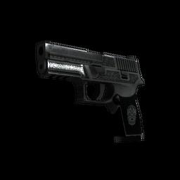 StatTrak™ P250 | Cartel (Battle-Scarred)
