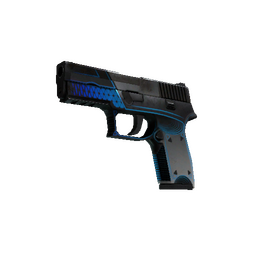 StatTrak™ P250 | Valence (Battle-Scarred)