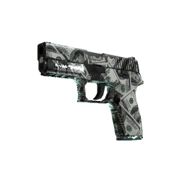 P250 | Franklin (Well-Worn)