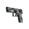 P250 | Franklin <br>(Field-Tested)