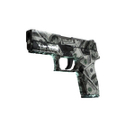 P250 | Franklin (Field-Tested)