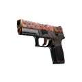 StatTrak™ P250 | Mehndi <br>(Factory New)