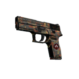 StatTrak™ P250 | Red Rock (Battle-Scarred)