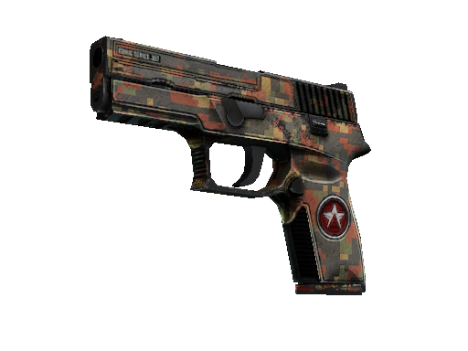 P250 | Red Rock Battle-Scarred