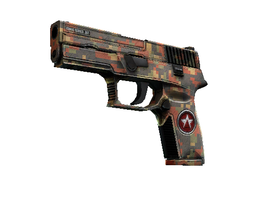 P250  |  Red Rock  Well-Worn