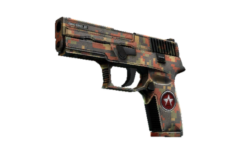 P250 | Red Rock (Field-Tested) Prices