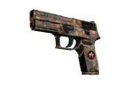 P250 | Red Rock (Well-Worn)