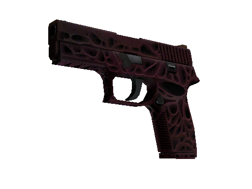 StatTrak™ P250 | Contaminant (Battle-Scarred)