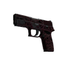 P250 | Contaminant <br>(Well-Worn)