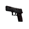 P250   Contaminant <br>(Battle-Scarred)