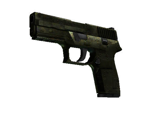 P250 | Iron Clad Battle-Scarred