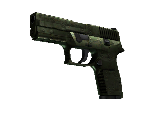 P250 | Iron Clad Well-Worn