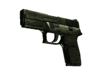 P250 | Iron Clad (Field-Tested)