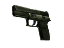 P250 | Iron Clad