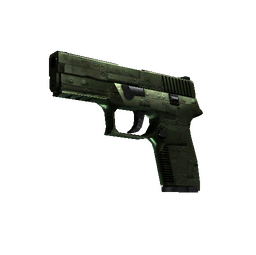 StatTrak™ P250 | Iron Clad (Factory New)