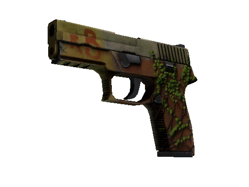 P250 | Inferno Battle-Scarred