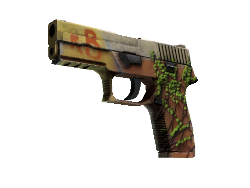 StatTrak™ P250 | Inferno (Field-Tested)