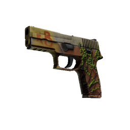 P250 | Inferno (Well-Worn)