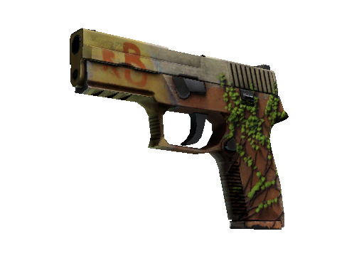 P250 | Inferno Field-Tested