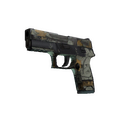 P250 | Modern Hunter <br>(Battle-Scarred)