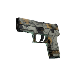 P250 | Modern Hunter (Well-Worn)