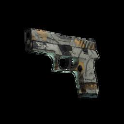 P250 | Modern Hunter (Well-Worn)