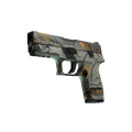 P250 | Modern Hunter <br>(Field-Tested)