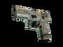 P250 | Modern Hunter