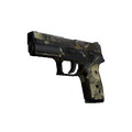 P250 | Contamination <br>(Battle-Scarred)