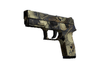 P250 | Contamination (Field-Tested)