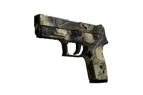 P250 | Contamination (Well-Worn) Prices