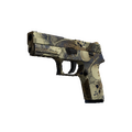 P250 | Contamination <br>(Minimal Wear)