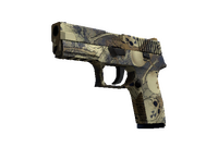 P250 | Contamination (Factory New)