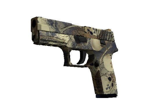 P250 | Contamination Factory New