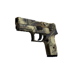 P250 | Contamination (Minimal Wear)