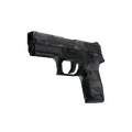 P250 | Facets <br>(Battle-Scarred)